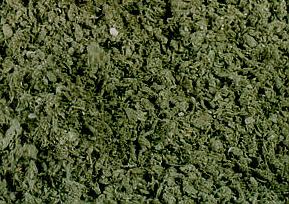 image of paper sludge
